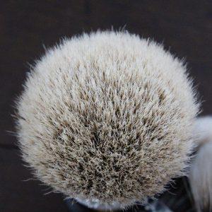 Touffe Manchurian Badger